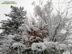 Зима на прощання гримне дверима